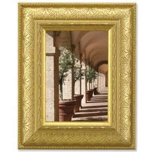 Domed Shape Picture Frame in Gilded Gold Size: 8 x 10 Electronics