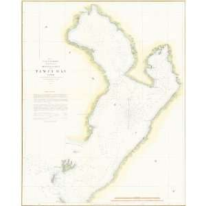 U.S. Coast Survey by Bache 1855 Antique Map of Tampa Bay