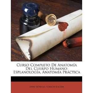 Curso Completo De Anatomía Del Cuerpo Humano