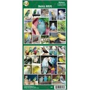 Pet Qwerks S64 Small Birds Sticker