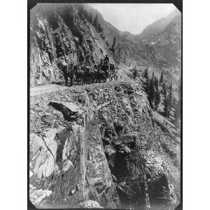: Thomas F Walsh,gold mines,Stage coach,Ouray,CO,1901: Home & Kitchen