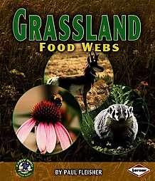 Grassland Food Webs  Overstock