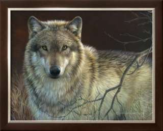 Uninterrupted Stare Gray Wolf Prints by Joni Johnson godsy at