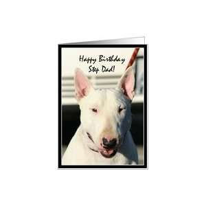 Happy Birthday Dad English Bull Terrier Card: Health & Personal Care