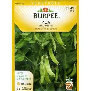 Burpee 66548 Pea, Snow Snowbird Seed Packet Patio, Lawn