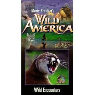 Wild America   Dangerous Encounters [VHS]: Marty Stouffers Wild