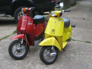 HONDA MELODY SCOOTER MOPED CLASSIC 1983
