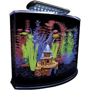 GloFish Aquarium Kit with Blue LED Light, 5 Gallon  Pet