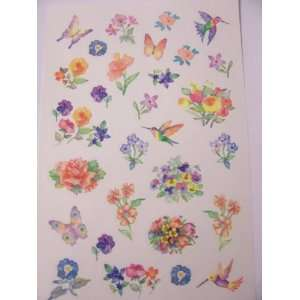 ~ Hummingbirds, Butterflies, and Flowers (58 Stickers) Toys & Games