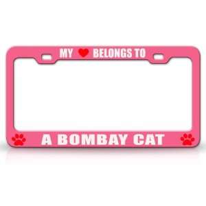MY HEART BELONGS TO A BOMBAY Cat Pet Auto License Plate