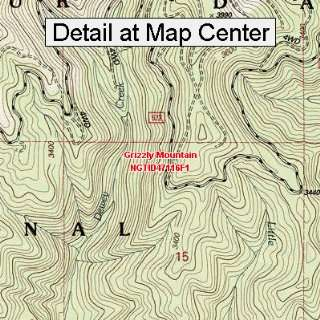 USGS Topographic Quadrangle Map   Grizzly Mountain, Idaho